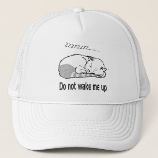 sleeping cat 2 trucker hat