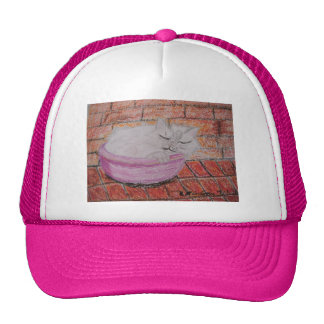 Sleeping Cat Cap