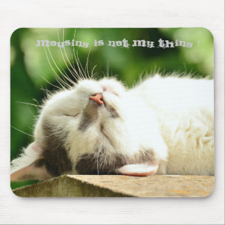 Sleeping Cat Mouse Pad