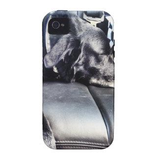 Sleeping Dog iPhone 4 Case