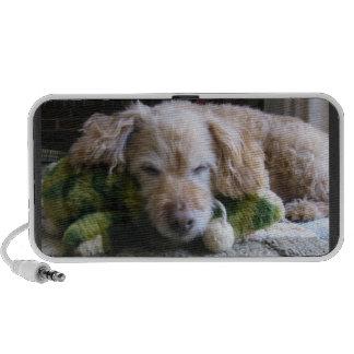 Sleeping Dog LIstening to Music iPhone Speakers