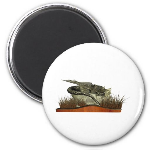 Sleeping Dragon on a Rock Magnets