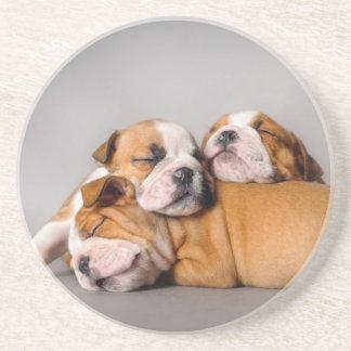 Sleeping English bulldog Coaster