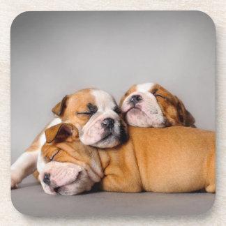 Sleeping English bulldog Drink Coaster
