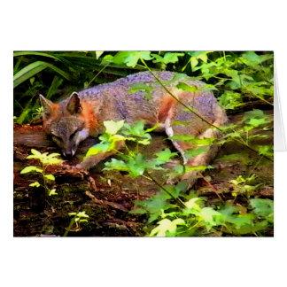 SLEEPING FOX ON A TREE CARD