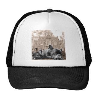 Sleeping French Bulldogs Trucker Hat