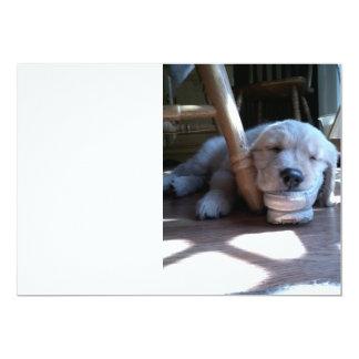 Sleeping Golden Retriever Puppy 13 Cm X 18 Cm Invitation Card