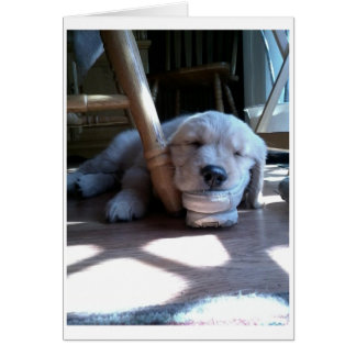 Sleeping Golden Retriever Puppy Greeting Card