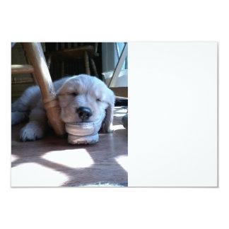 Sleeping Golden Retriever Puppy 3.5x5 Paper Invitation Card