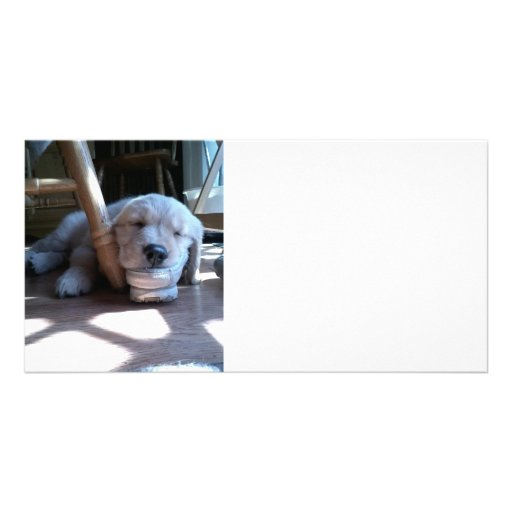 Sleeping Golden Retriever Puppy Photo Greeting Card