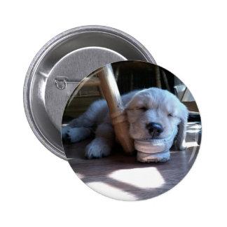 Sleeping Golden Retriever Puppy Pinback Button
