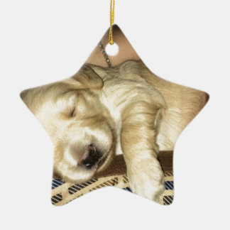 Sleeping GoldenDoodle Puppy Ceramic Ornament