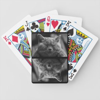 Sleeping Gray Cat Bicycle Playing Cards