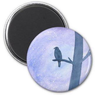 Sleeping Hawk Magnet