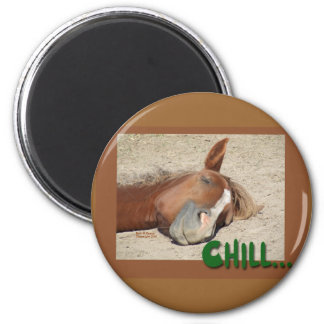 Sleeping  Horse Smile: Chill 6 Cm Round Magnet