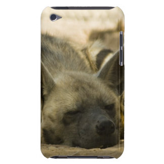Sleeping Hyena  iTouch Case Case-Mate iPod Touch Case