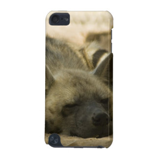 Sleeping Hyena  iTouch Case iPod Touch (5th Generation) Cover
