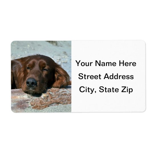 Sleeping Irish Setter Shipping Label