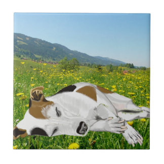 Sleeping Jack Russell in a colourful flower Meadow Ceramic Tile