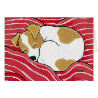 Sleeping Jack Russell Puppy   Dog Art Note Card