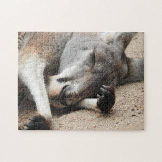 Sleeping Kangaroo Puzzle