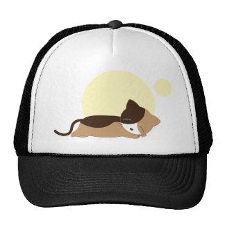 Sleeping Kitten Hat