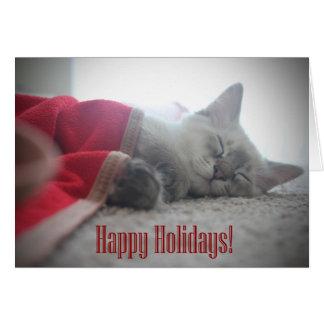 Sleeping Kitten Holiday Card