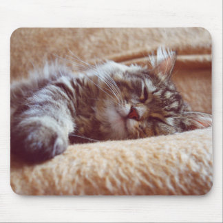 Sleeping Kitten Mouse Pad