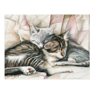 Sleeping Kittens Cat Art Postcard