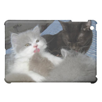 Sleeping Kittens Case For The iPad Mini