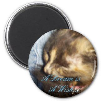Sleeping kitty 6 cm round magnet