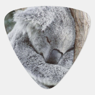 sleeping koala baby2 guitar pick