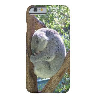 Sleeping Koala Barely There iPhone 6 Case
