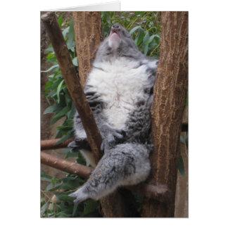Sleeping Koala Bear Note Card