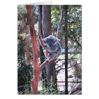 Sleeping Koala Bear ~ Notecard Note Card