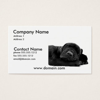 Sleeping Lab Puppy Dog Business Card