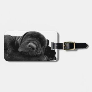 Sleeping Lab Puppy Luggage Tag