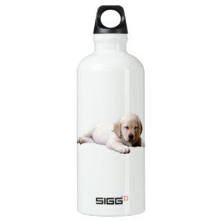 Sleeping Lab Water Bottle