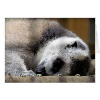 Sleeping Lemur Greeting Card