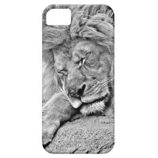 Sleeping Lion iPhone 5 Case