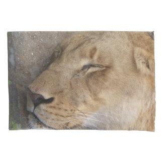 sleeping lioness pillow case