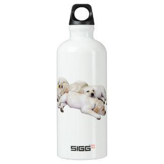 Sleeping Litter of Labs Water Bottle