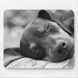 Sleeping Miniature Pinscher dog Mouse Pad