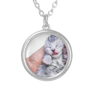 Sleeping newborn  silver tabby cat in hand silver plated necklace