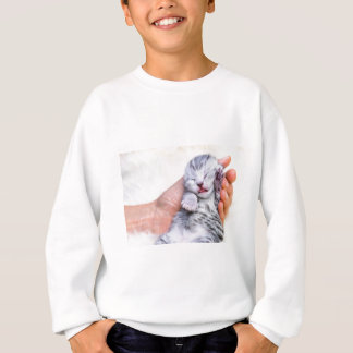 Sleeping newborn  silver tabby cat in hand sweatshirt