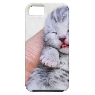 Sleeping newborn  silver tabby cat in hand tough iPhone 5 case