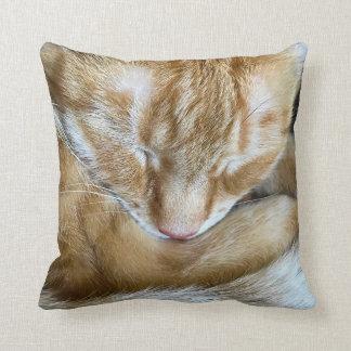 Sleeping orange tabby cat cushion