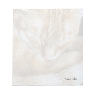 Sleeping orange tabby cat notepad