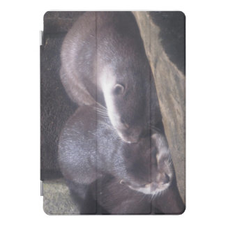 Sleeping Otters iPad Pro Cover