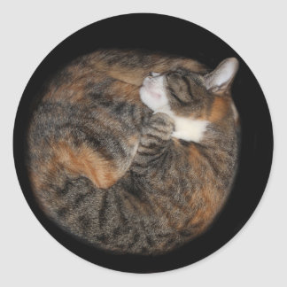 Sleeping patched tabby classic round sticker